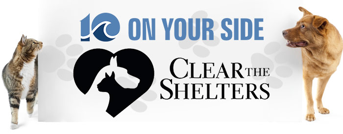 clear-the-shelters-700x274